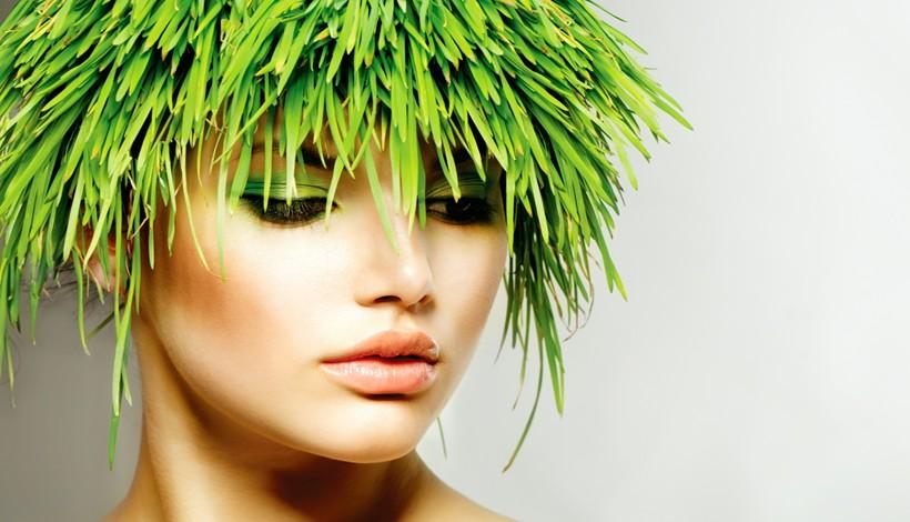 Salon de coiffure bio biobela milton paris 9 - Salon de coiffure coloration vegetale ...
