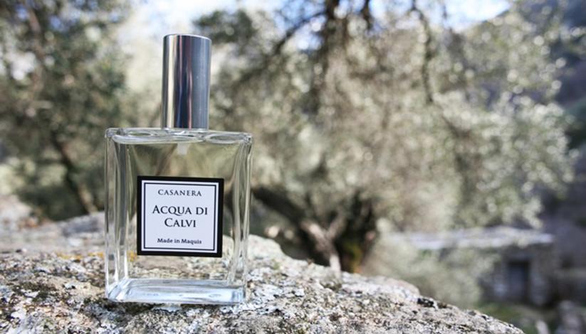 Parfum-Acqua-di-calvi-DEF