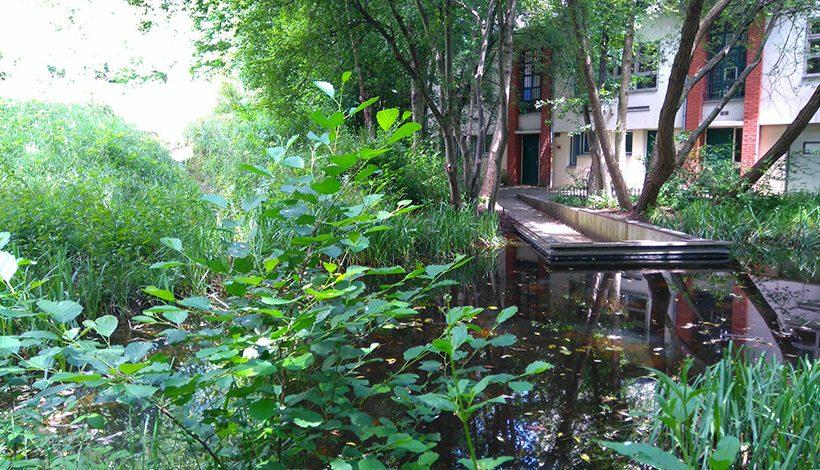 Jardinerie Le Jardin Naturel Pierre Emmanuel Paris 20